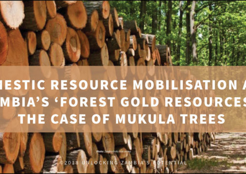 BLOG – Domestic Resource Mobilisation and Zambia's 'Forest Gold Resources':  The Case of Mukula Trees
