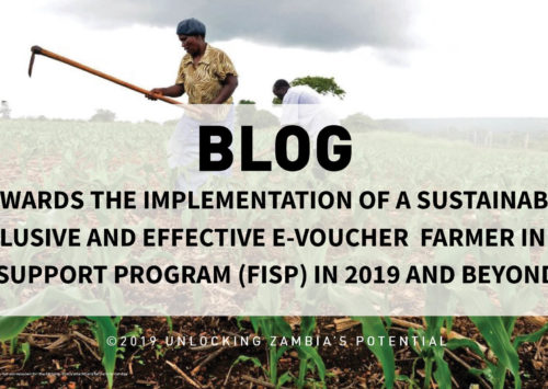 Blog – Towards the Implementation of a Sustainable, Inclusive and Effective E-voucher Farmer Input Support Program (FISP) in 2019 and beyond