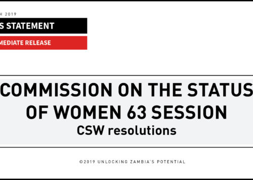 BLOG: Commission on the Status of Women 63 Session