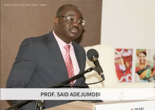AFRICA-CHINA THINK TANKS FORUM – Professor Said Adejumobi (ECA) – Zambia