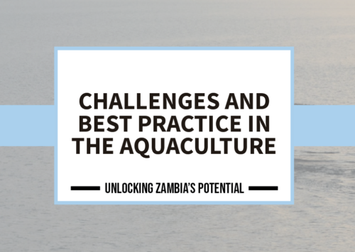 BLOG – Challenges and Best Practice in the Aquaculture Sector