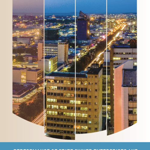 Performance of State Owned Enterprises and Privatization in Zambia – Getting the Right Tools Policy Brief