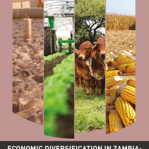 Economic Diversification in Zambia – Are we getting there?  Assessing the Prospects for Economic Diversification in Zambia