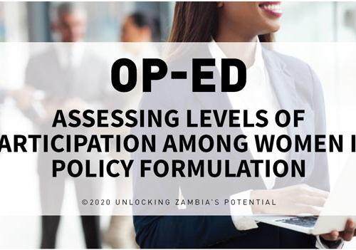 Blog – Assessing Levels of Participation among Women in Policy Formulation