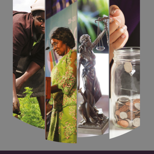 Social Protection Series Enhancing Women's Economic Participation and Opportunity Briefing Document