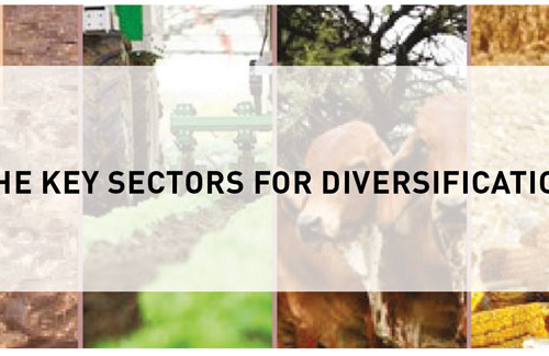 Blog – The Key Sectors for Diversification