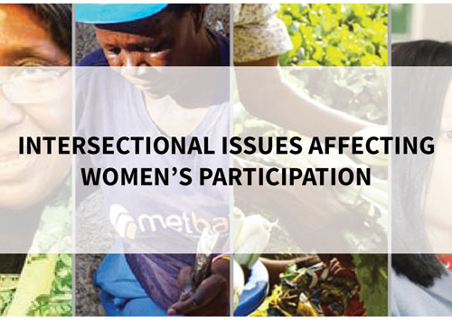 Blog – Intersectional Issues Affecting Women's Participation
