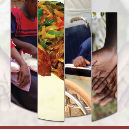 Analysis – Malnutrition among Children with Disabilities-Challenges and Opportunities for Zambia
