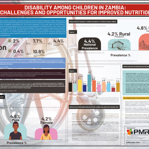 Disability Among Children in Zambia: Challenges and Opportunities for Improved Nutrition  – Infographic