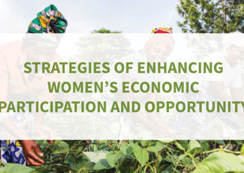 Blog – Strategies of Enhancing Women's Economic Participation and Opportunity