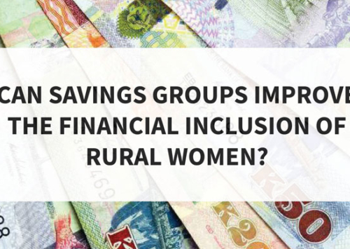 Blog – Can Savings Groups Improve the Financial Inclusion of Rural Women?