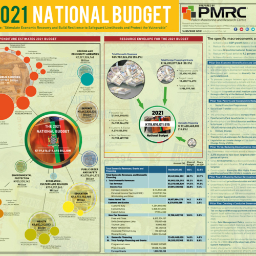 2021 National Budget Infographic