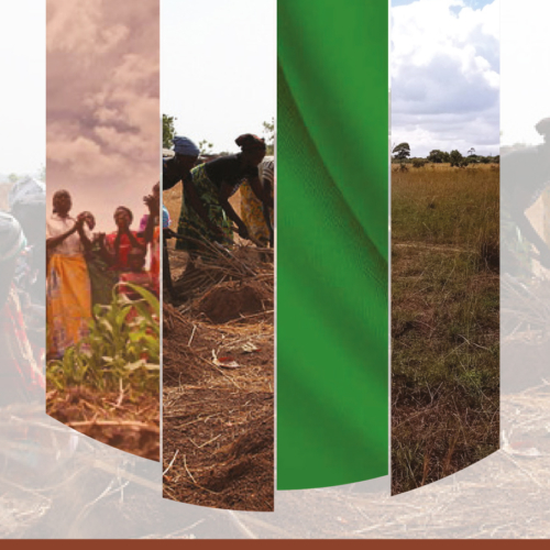 Land Tenure and Resource Rights for Women and Youths
