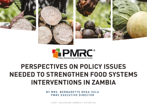 Perspectives on Policy Issues Needed to Strengthen Food Systems Interventions in Zambia – Presentation